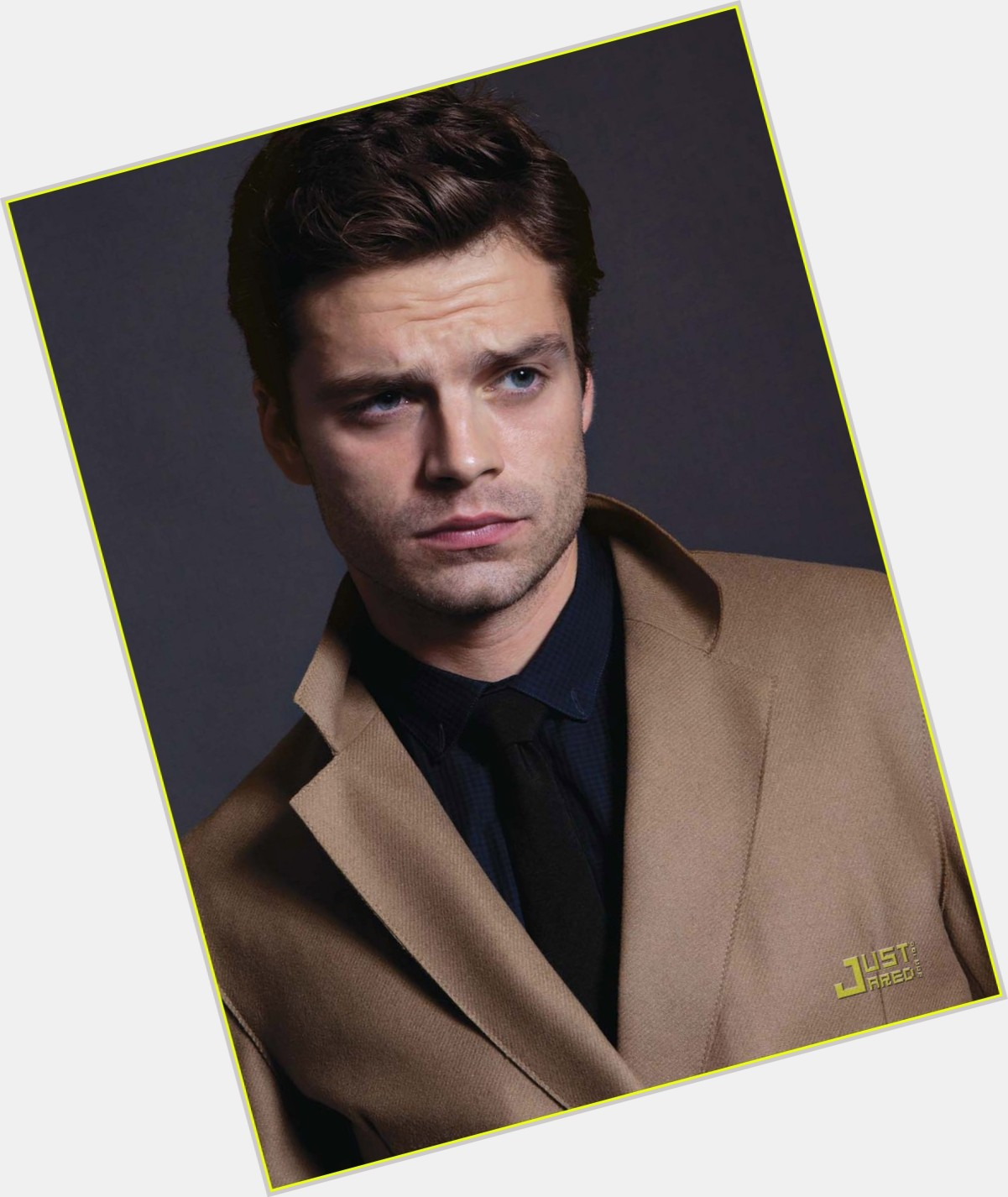 Sebastian Stan birthday 2015